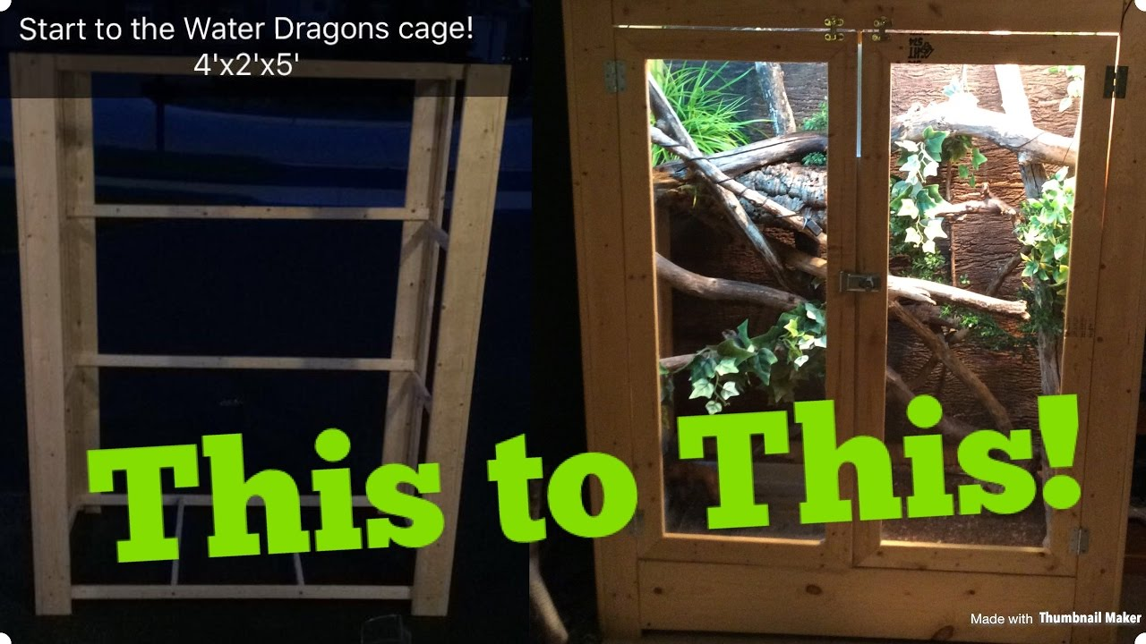 How To Build An Adult Chinese Water Dragon Enclosure Youtube