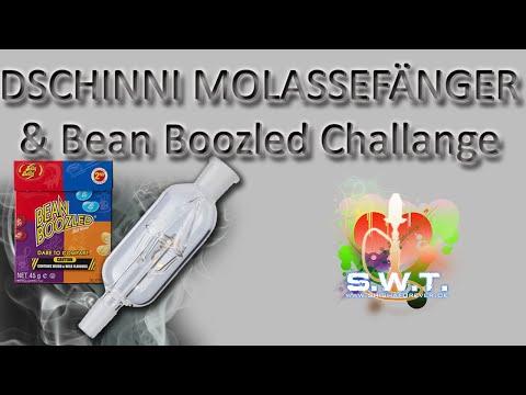Dschinni Molassefänger & Jelly Belly Bean Boozled Challenge