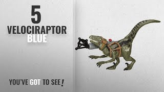 Top 10 Velociraptor Blue [2018]: Jurassic World Bashers & Biters Velociraptor Blue Figure