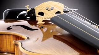 Laubach Master Violin LIM 918 V Soloist