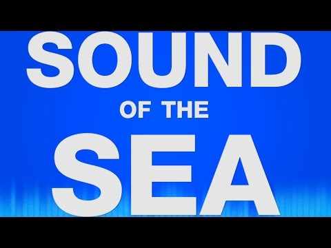 Sea Sound Effects Sound Of The Sea Soundeffekt