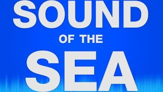 Sea Sound Effects - Sound of the Sea Waves - Water Waves - Ocean Waves - Calming Waves SOUND