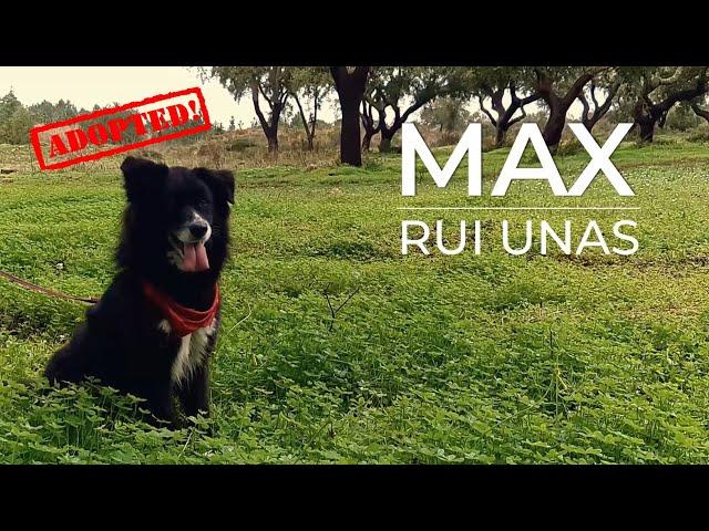 Eu sou o MAX