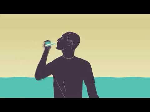 Cara kerja ginjal (indo) - YouTube