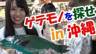 【楠木チーム】閲覧注意!沖縄の市場に行ったら『ヤバい魚』しかいなかった!!