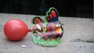 Weco Feuerwerk Crazy Chicken Neuheit 2012 Test