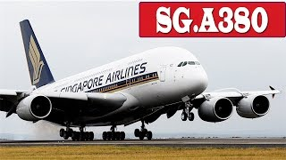 singapore airline a380 landing in changi airport   flight status