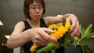 Ikebana, Vermont Traditional Arts Apprenticeship Program