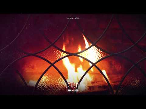 Tchami - Shades (feat. Donnie Sloan & Ricky Ducati)