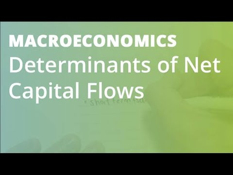 Determinants of Net Capital Flows | Macroeconomics