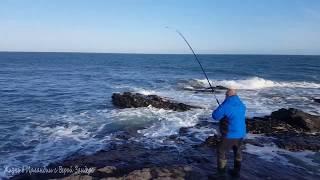 Морская рыбалка в Ирландии Как поймать скумбрию