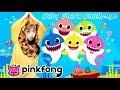 Baby Shark Challenge Little Lion Cub Does The PinkFong Baby Shark Dance BabySharkChallenge mp3