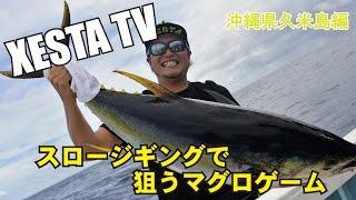 XESTA TV スロージギングで狙うマグロゲーム 沖縄県久米島編