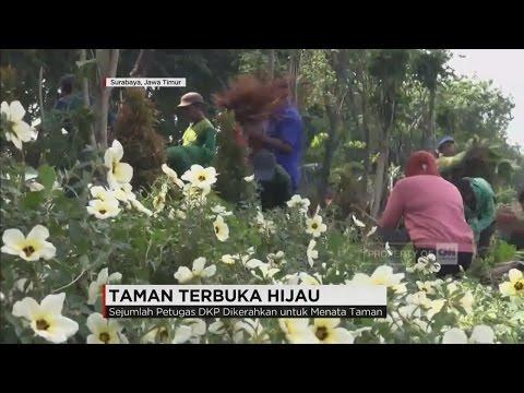 Demi Surabaya Indah & Cantik, Walikota Risma Turun Langsung Membuat Taman Terbuka Hijau