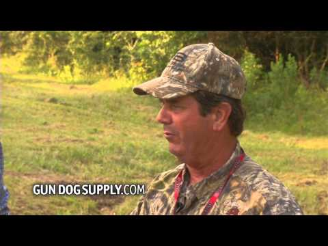 gundog-spot-&-segment-21-whistle-commands