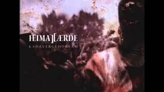 Heimataerde - Warum das Leiden lohnt - Lyrics