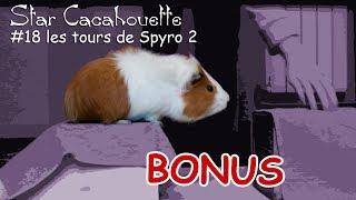 les tours de Spyro 2