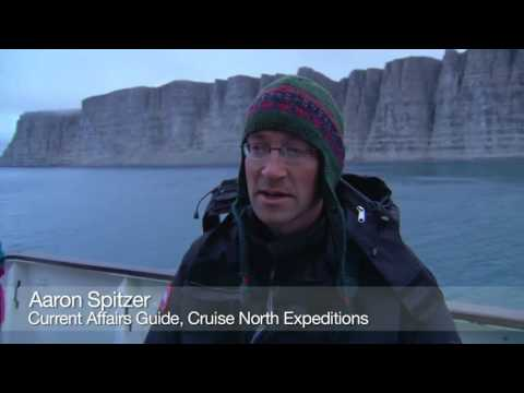 Arctic Birdspotting Prince Leopold Island  Nunavut Canada