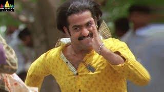 Yamadonga Movie Scenes   Jr NTR Intro Fight Scene   SS Rajamouli, Priyamani   Sri Balaji Video