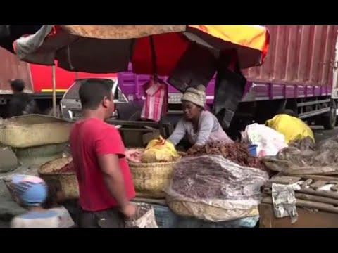 أخبار صحية | منظمة الصحة: حالة #طاعون ظهرت في سيشل جاءت من #مدغشقر