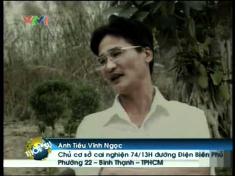 Tieuvinhngoc.com Trung tam cai nghien Tieu Vinh Ngoc VTV1.mpg