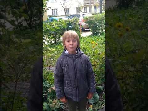 Видеовизитка Даниила Хасанова