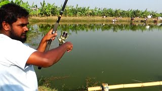 Big Rohu Fishing Videos By Shishir Using Fishing Reel