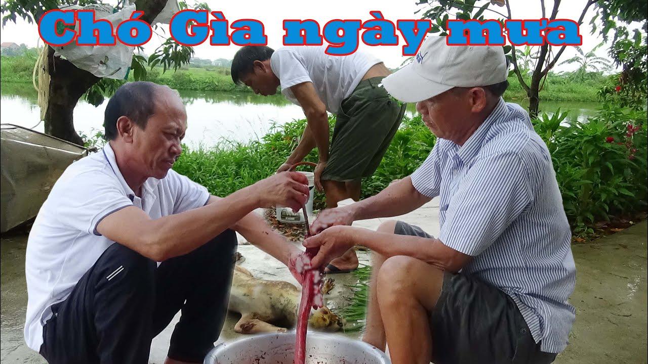 Cầy Già liên hoan Hội nuôi Cá.Quy tụ toàn cao thủ nhất thế gian làm đồ nhắm