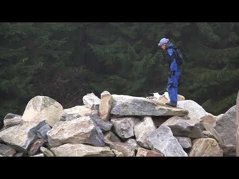 Parson Russell Terrier Xenophilius vom Räuberschlag - Rettungshundeprüfung IRO Fläche A & Trümmer A