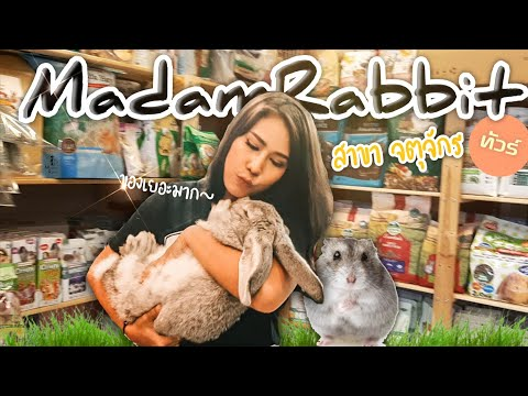 พาทัวร์ร้านกระต่ายMadamrabbitที่จตุจักรสนุกมากๆ!!!