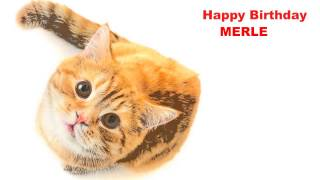 Merle  Cats Gatos - Happy Birthday