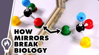 Homochirality: Why Nature Never Makes Mirror Molecules