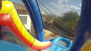 Dogs on a Water Slide 2014