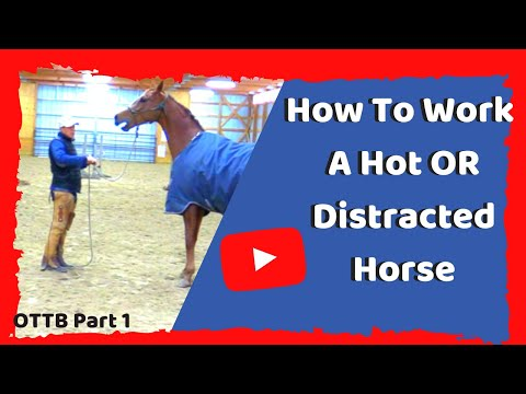How To Work With A Hot And Distracted Horse - Horsemanship To Focus And Relax Your Horse.