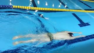 한국수영협회 접영,평영 드릴 10 한번 위로 한번 아래…