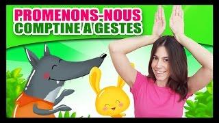Promenons-nous dans les bois - Comptines à gestes pour bébés - Titounis thumbnail