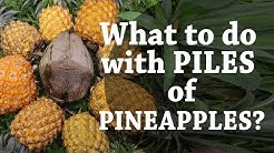 What to do with piles of pineapples? Hint: coconuts! (Day 5 of 30)