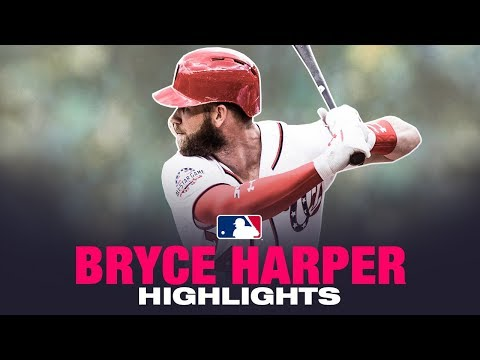 Bryce Harper Career Highlights