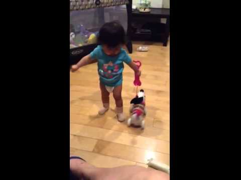 Haley is playing Leap Frog Alphapup   Take the ABC's for a walk    YouTube