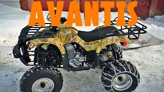 Avantis Hunter 250 обзор и тестдрайв квадроцикла