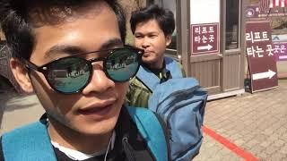 ខ្មែរនៅកូរ៉េ Seoul grand park lion zoo