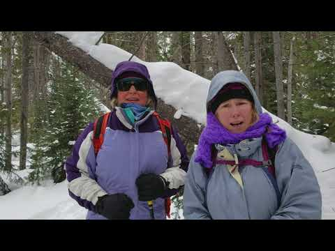 Yellowstone Winter Wildlife Tour for Women : Guest Reviews