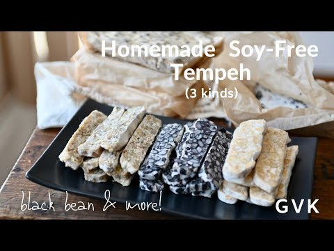 Soy - Free Tempeh (3 Kinds)