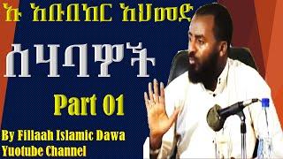 Sehabawoc ~ Ustaz Abubeker Ahmed | Part 01