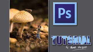 Photoshop Tutorial: Miniature Self Portrait