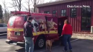 PA SPCA animal rescues picks up several dogs to transport to the shelter in Philadelphia.