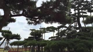 本日10月12日 びわ湖放送 曇天に笑うアニメスタート! ヒット祈願 に本...