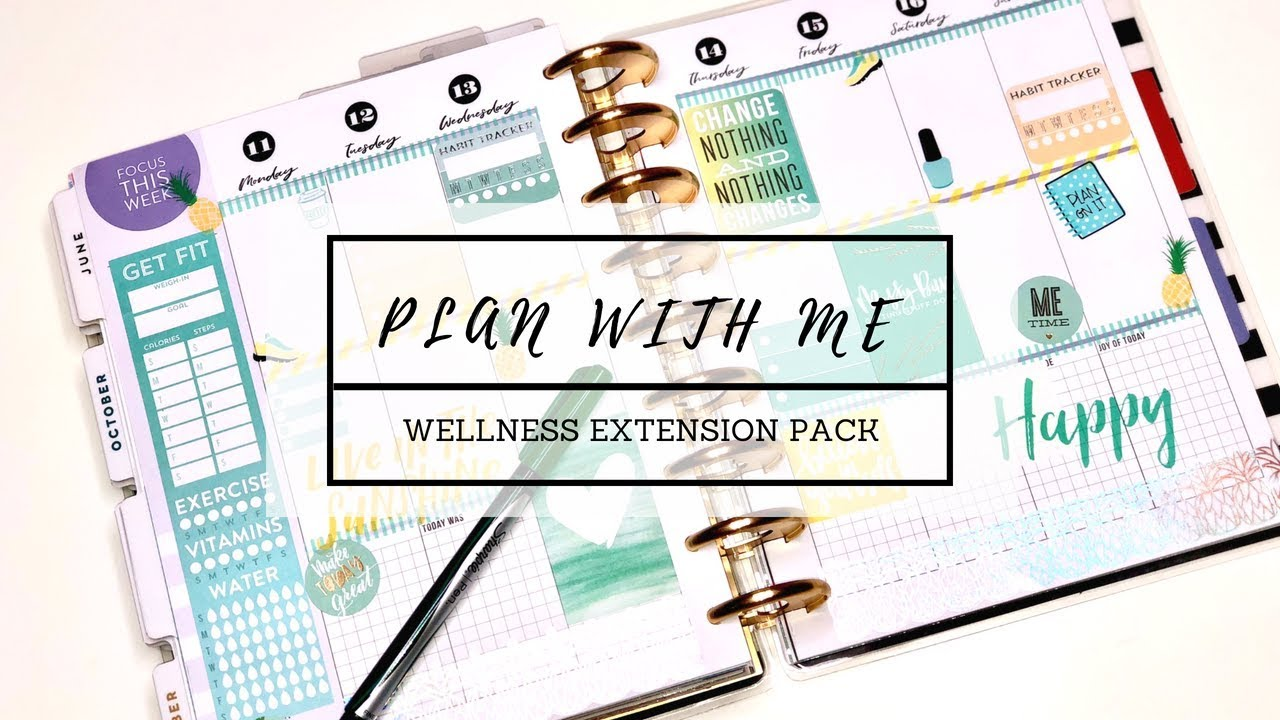 PLAN WITH ME  Classic Happy Planner  Wellness Extension Pack June 11-17