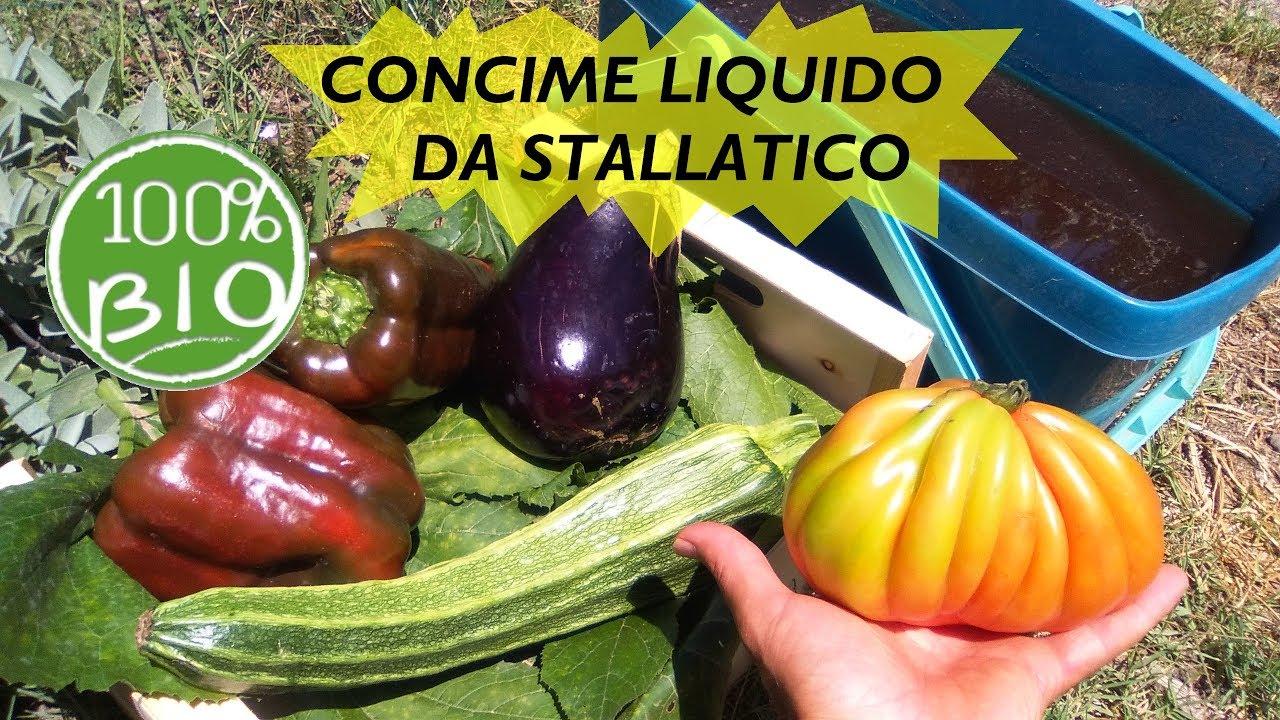 Concime liquido per orto e piante fai da te da stallatico for Bordi per aiuole fai da te