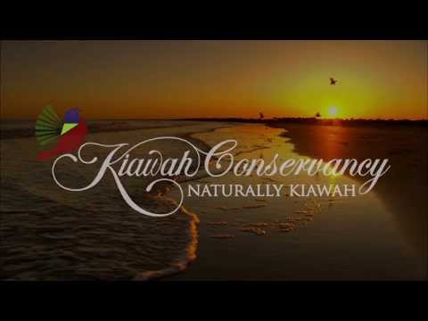 The Kiawah Conservancy's 2015 Loggerhead Sea Turtle Documentary